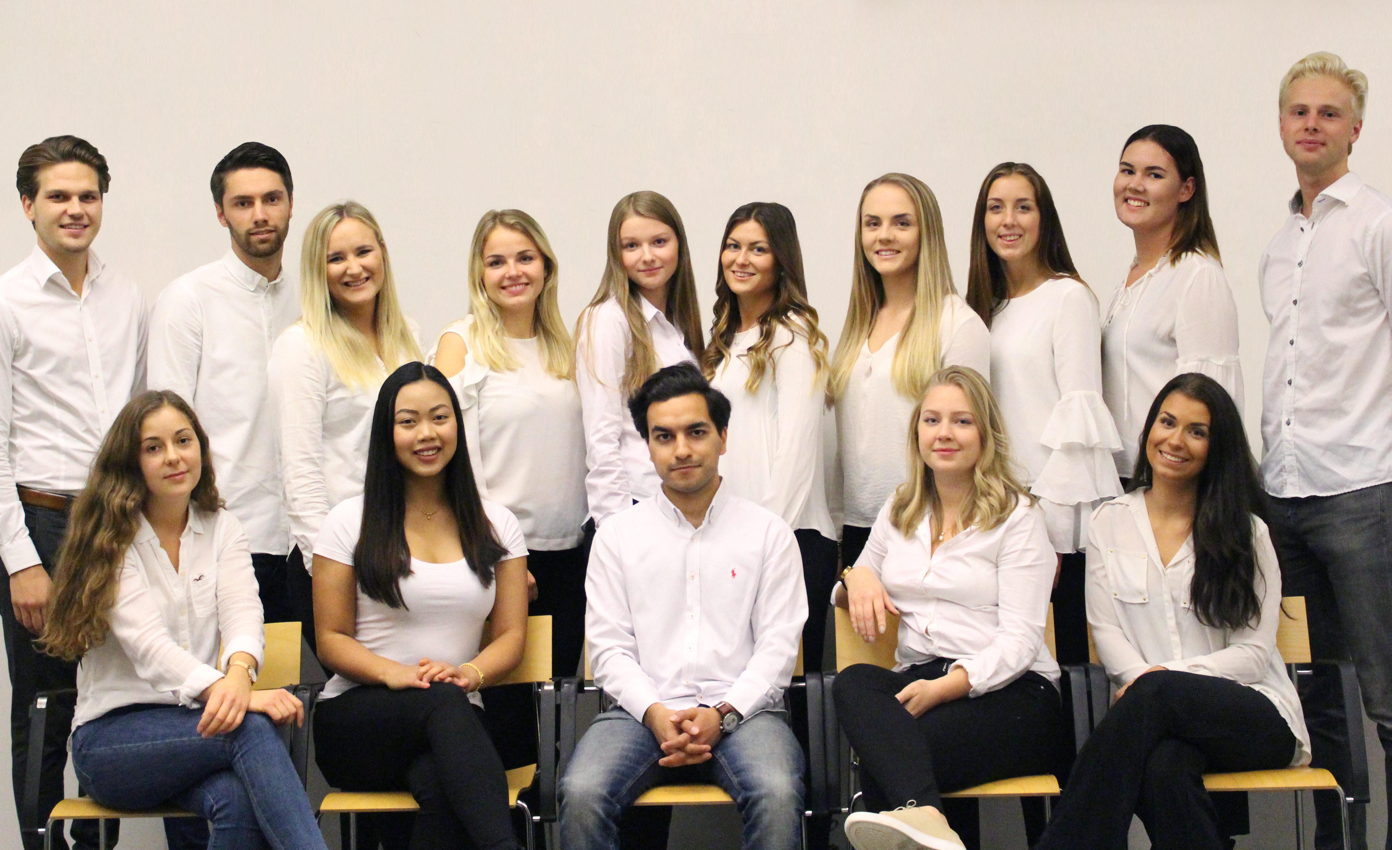 Projektgruppen 2017